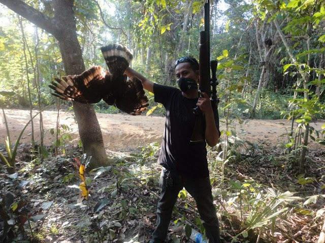Perburuan Elang Sulawesi