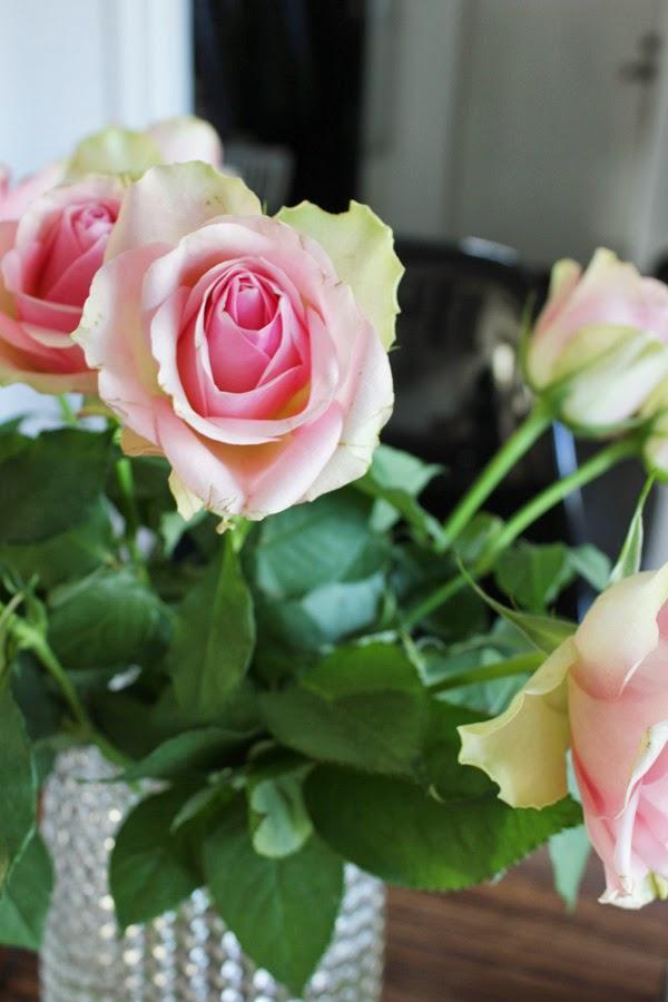 rosor, rosa snittblommor