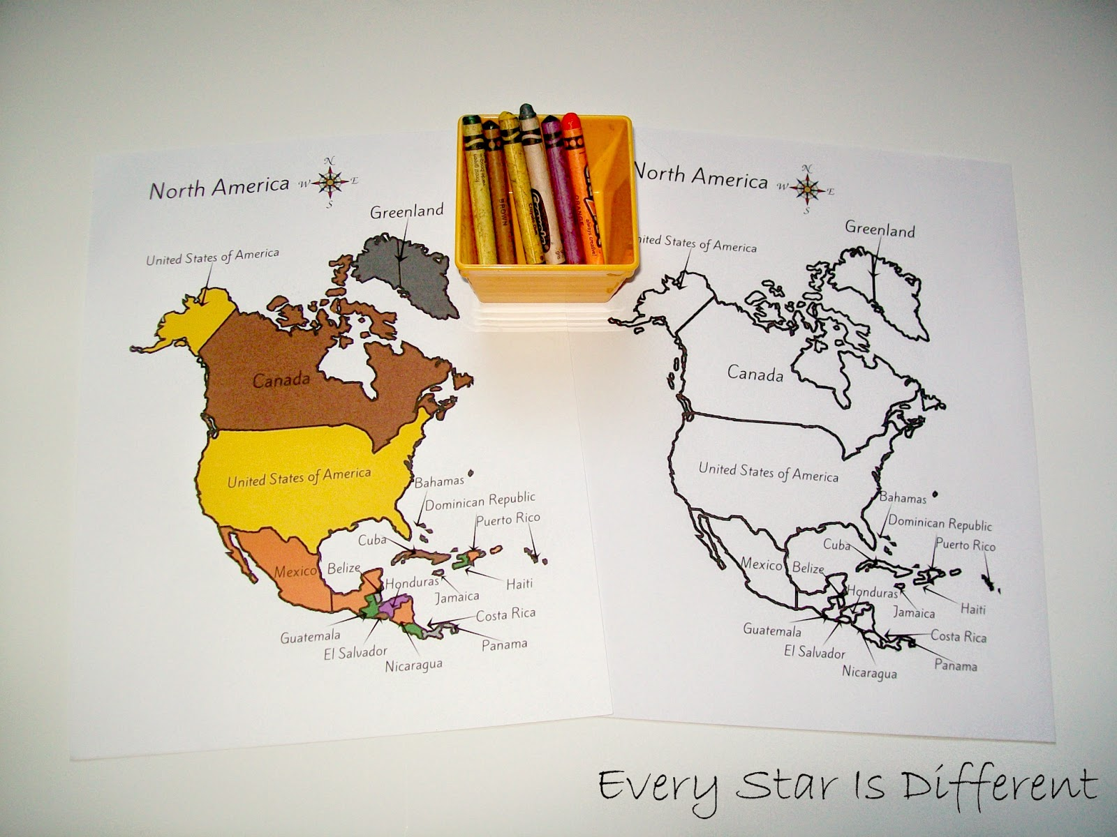 North America Unit with Free Printables  Every Star Is Different