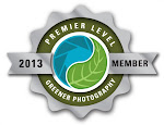 Greener Photography