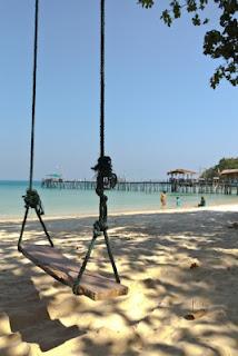 Tree Swing at the Beach