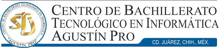 Centro de Bachillerato Tecnológico en Informática Agustín Pro