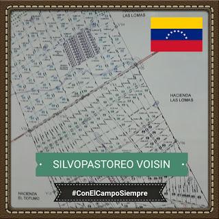 "Guía para el ""Curso de Silvopastoreo #Voisin"" (Prof. Jairo Faría) #PRV #VZLA"