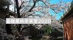 基礎農林2020演習林実習