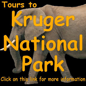 Tours to Kruger National Park