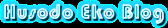 eko16