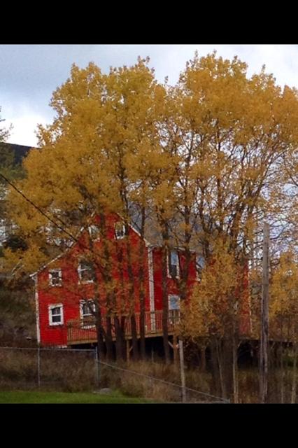 Lawton house, King's Cove, Newfoundland, Margaret Ryall