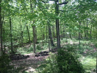 wooded lot for sale in powell ohio