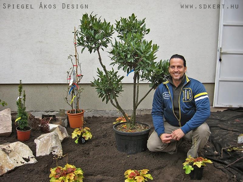 * Csináld magad kertépítés *: Kertdesign - kerti ötletek