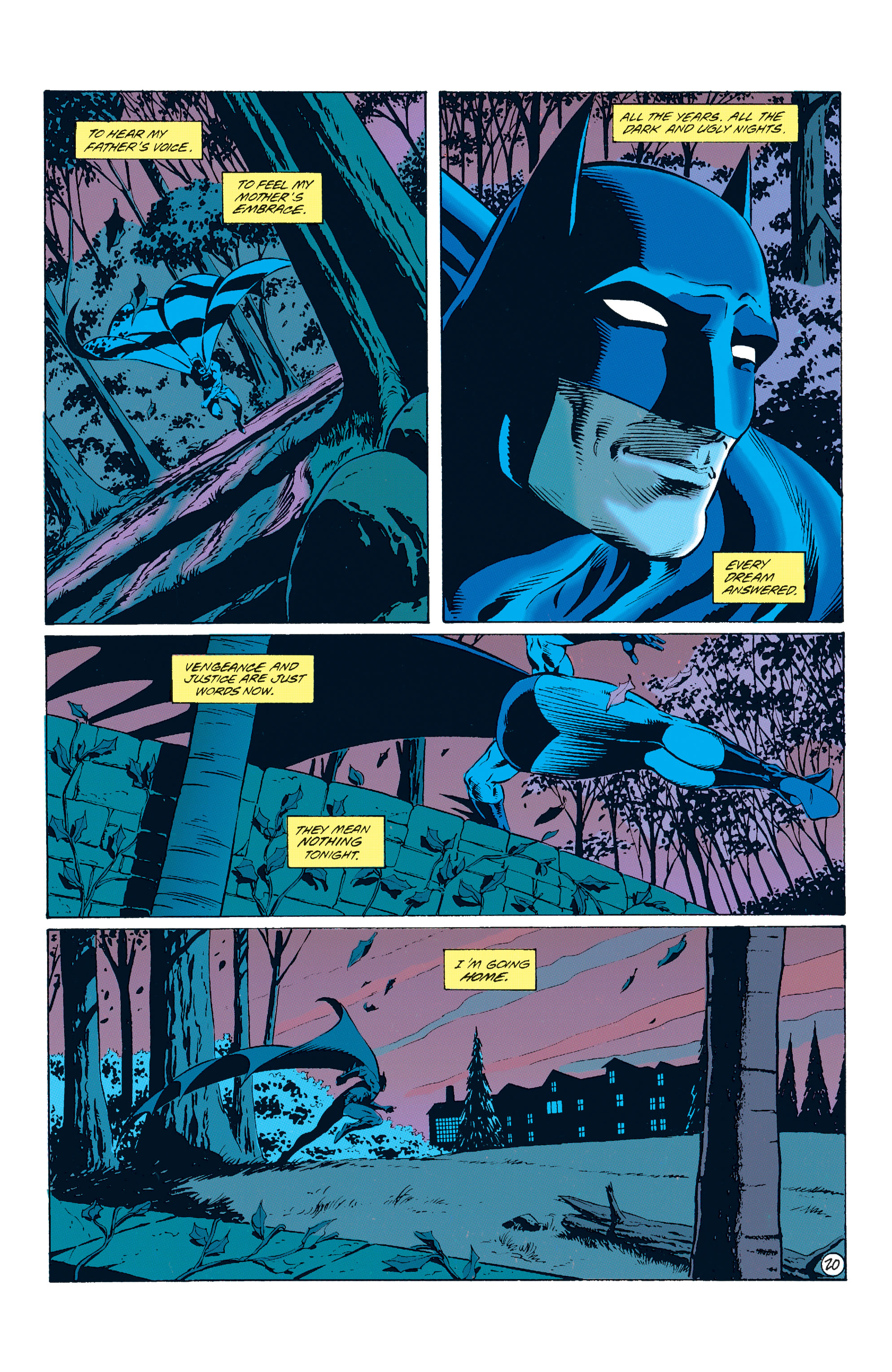 Detective Comics (1937) Issue #678 Page 21