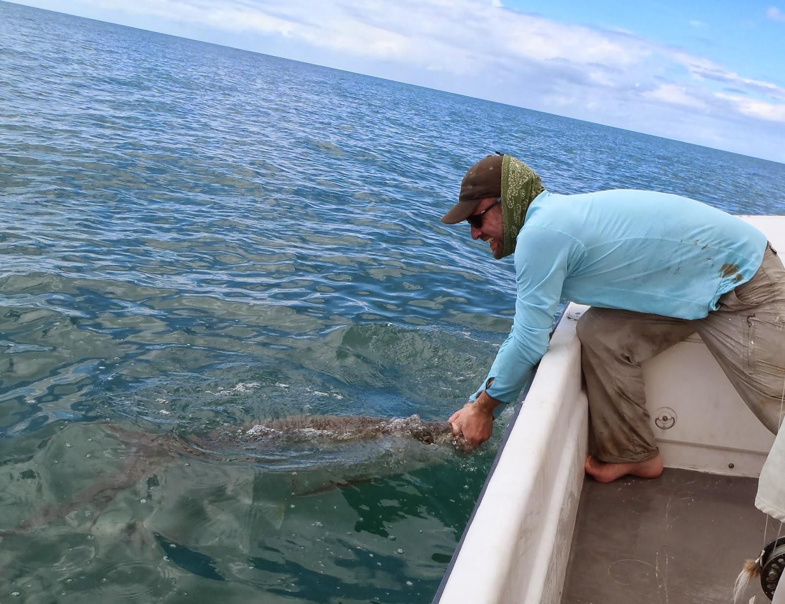 Light tackle adventure tarpon fishing boqueron bay big for Fly fishing puerto rico