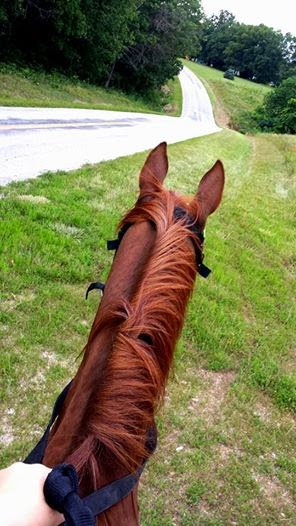 Life is better in the saddle. ;)