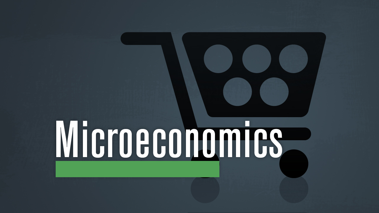 microeconomics assignments