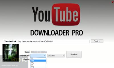 youtube video downloader pro