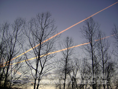 Jet trails across the early morning sky.