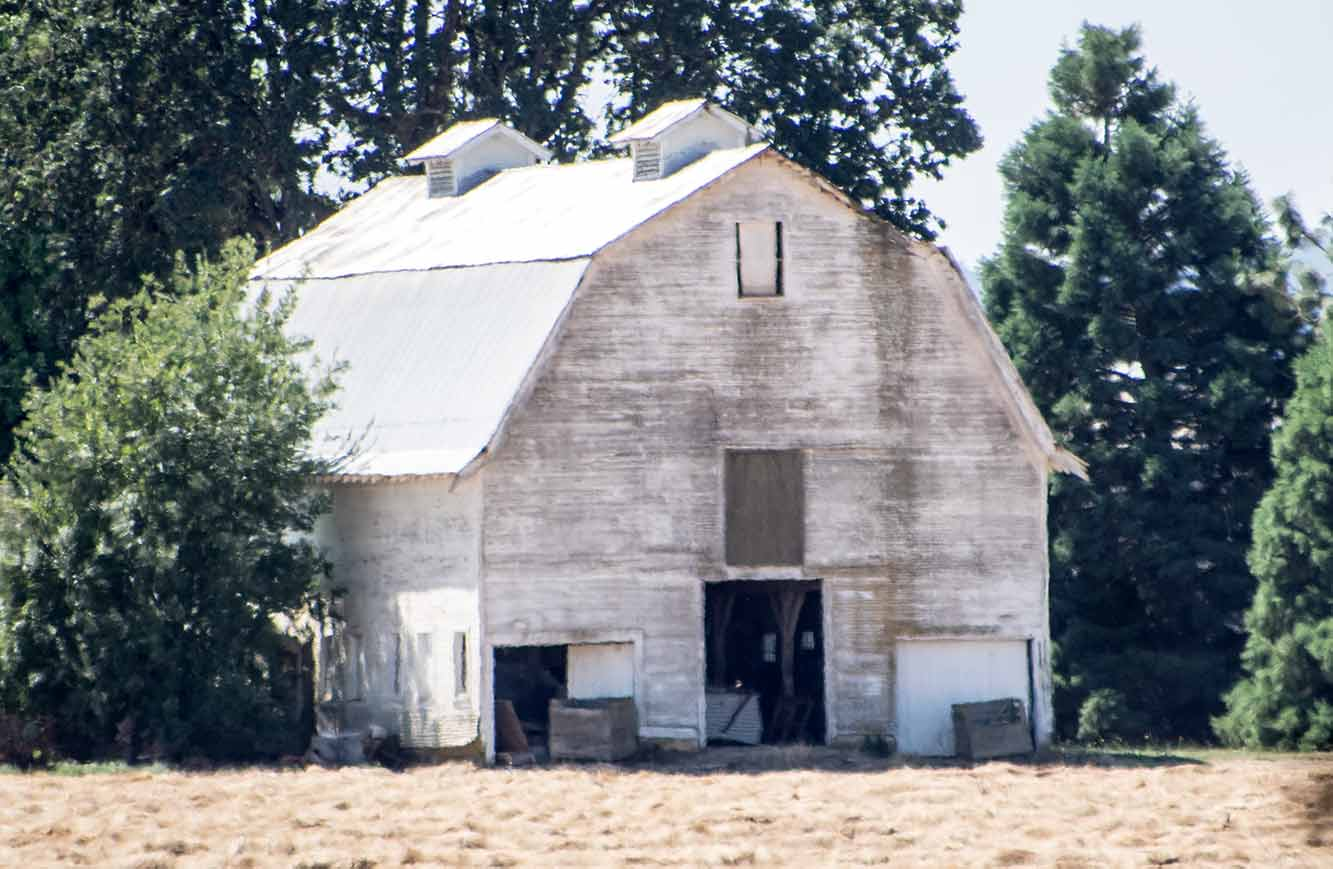 lloyd s blog two barns with gambrel roofs in oregon s willamette these two barns were very close together you find this all over the country world each micro locale will have its own style barn
