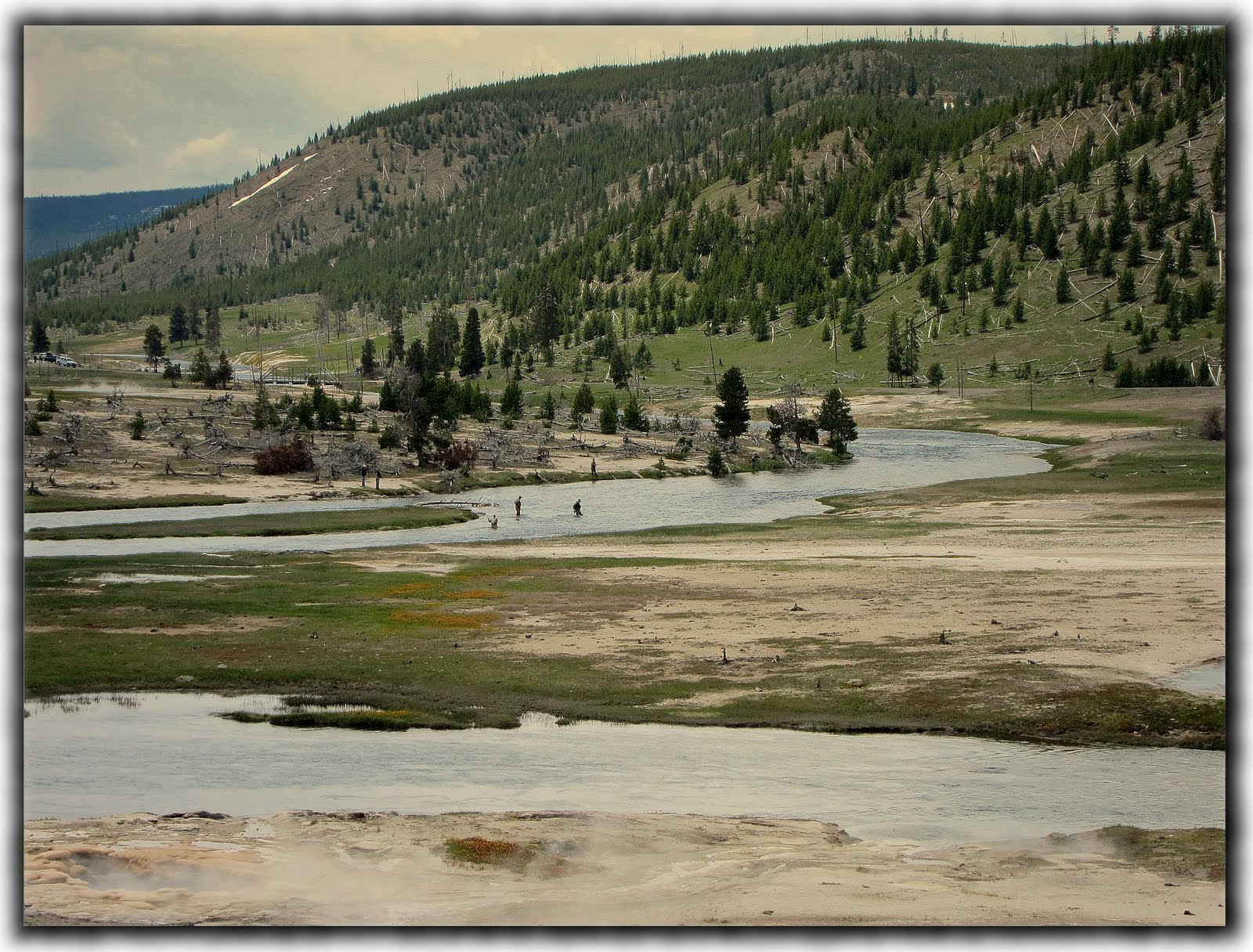 Fly fishing in yellowstone national park the yo yo for Yellowstone national park fishing