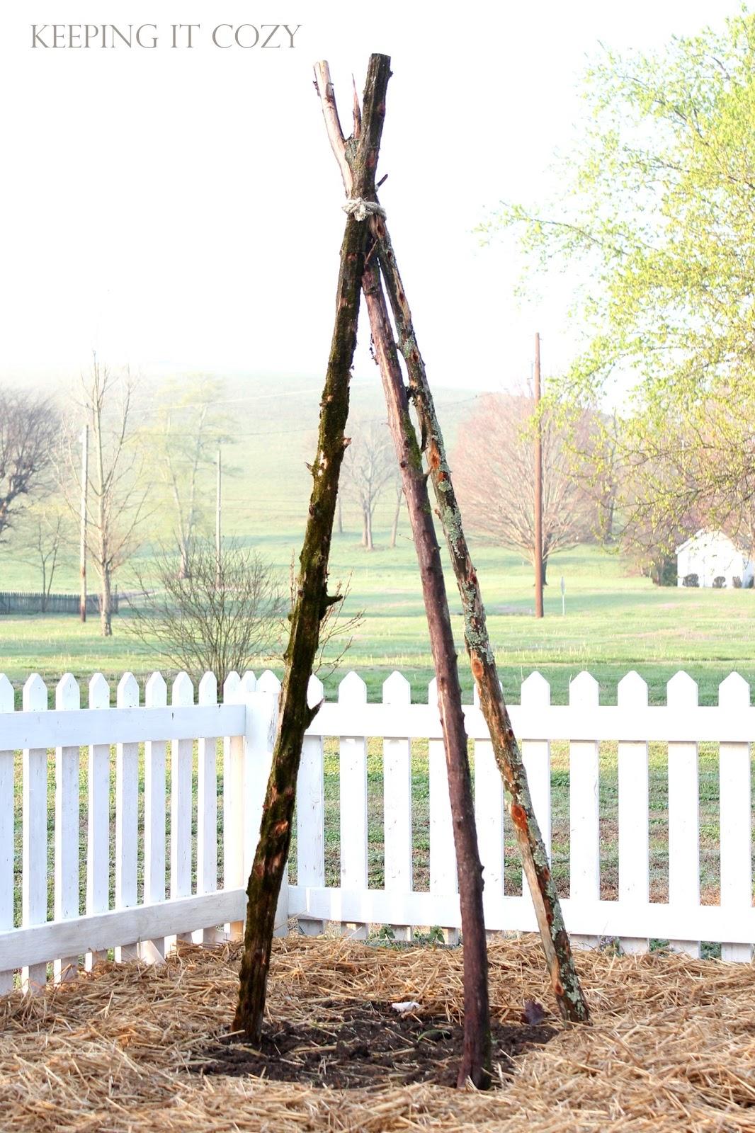 Keeping It Cozy Cedar Poles in the Garden