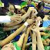Selección Mundialista Sub-17 es derrotada 42-64 por  Australia