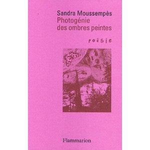 Photogénie des ombres peintes, Poésie/Flammarion 2009, rééditions 2010, 2014. Prix Hercule de Paris