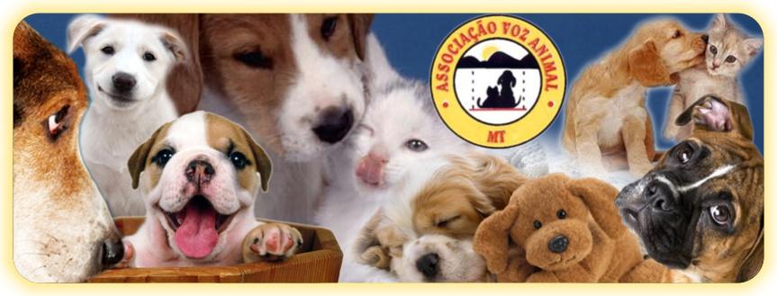 AVA - Associação Voz Animal - MT