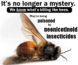 Ban Neonicotinoids in Canada