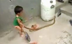 This Kid is Brave – Must watch