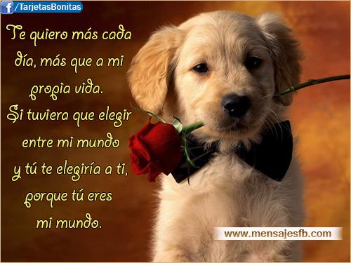 Mensajes bonitos de amor para facebook - Mensajes para Amor ...