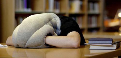 bantal tidur unik ostrich pillow