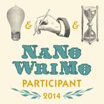 NaNoWriMo 2014