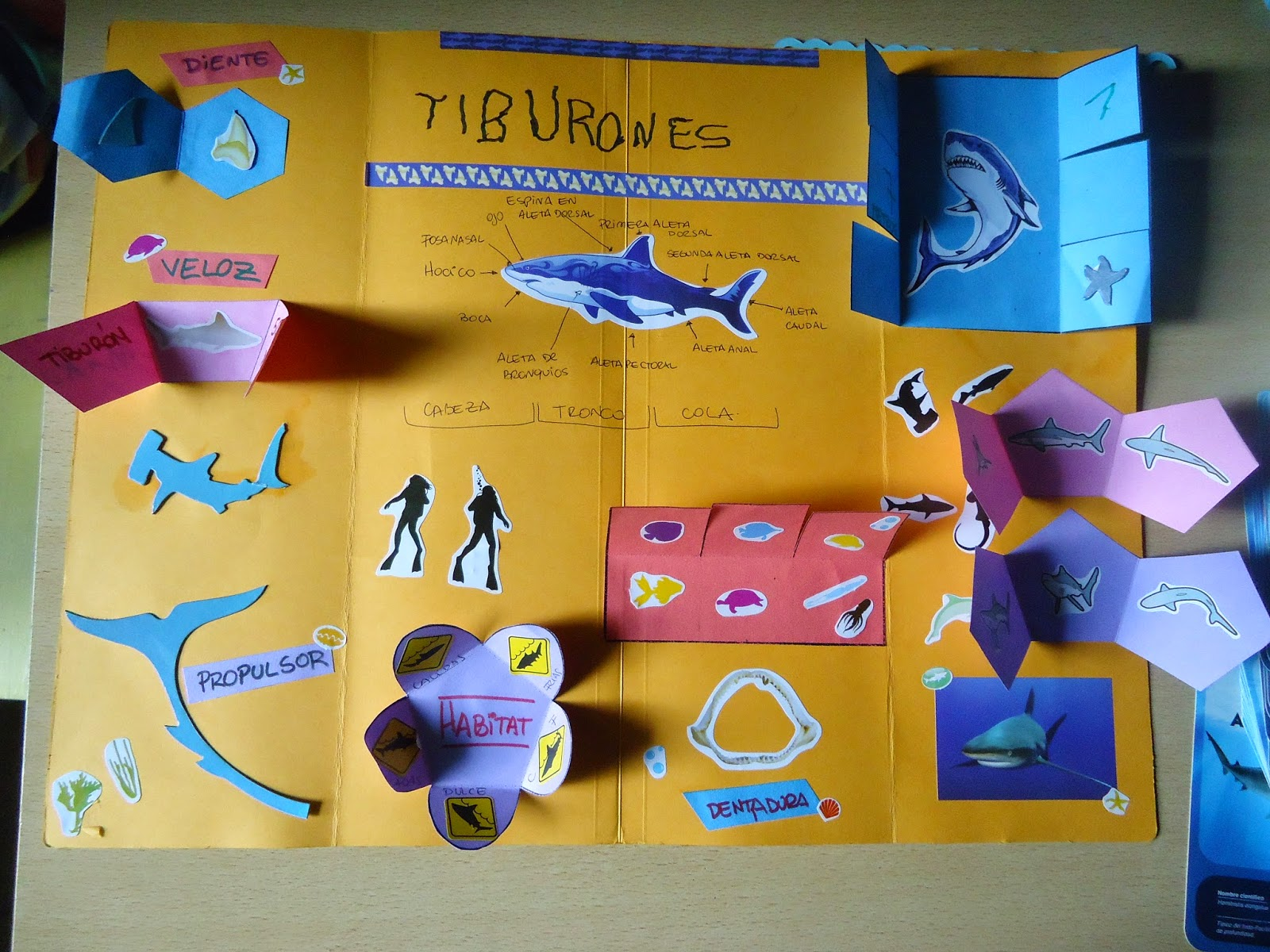 Aprendizaje Familiar: mayo 2015