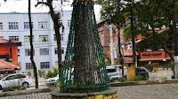 Árvores da Feirinha estão sendo enfeitadas pela Associação Livre da Feirinha do Alto (Alfa)