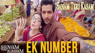 Ek Number Song lyrics - Sanam Teri Kasam