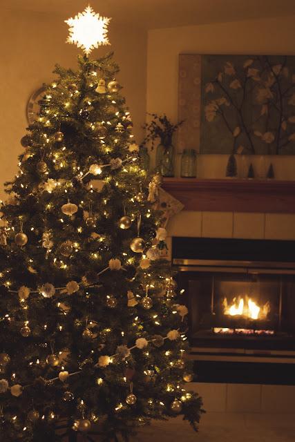 Polka Dot Christmas Tree Skirt