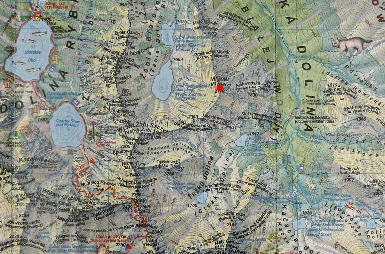 Młynarz na mapie