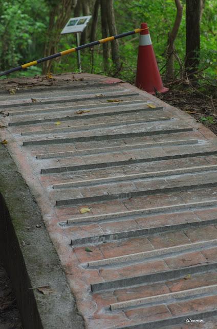雞南山步道上有些地方已增加了防滑的措施