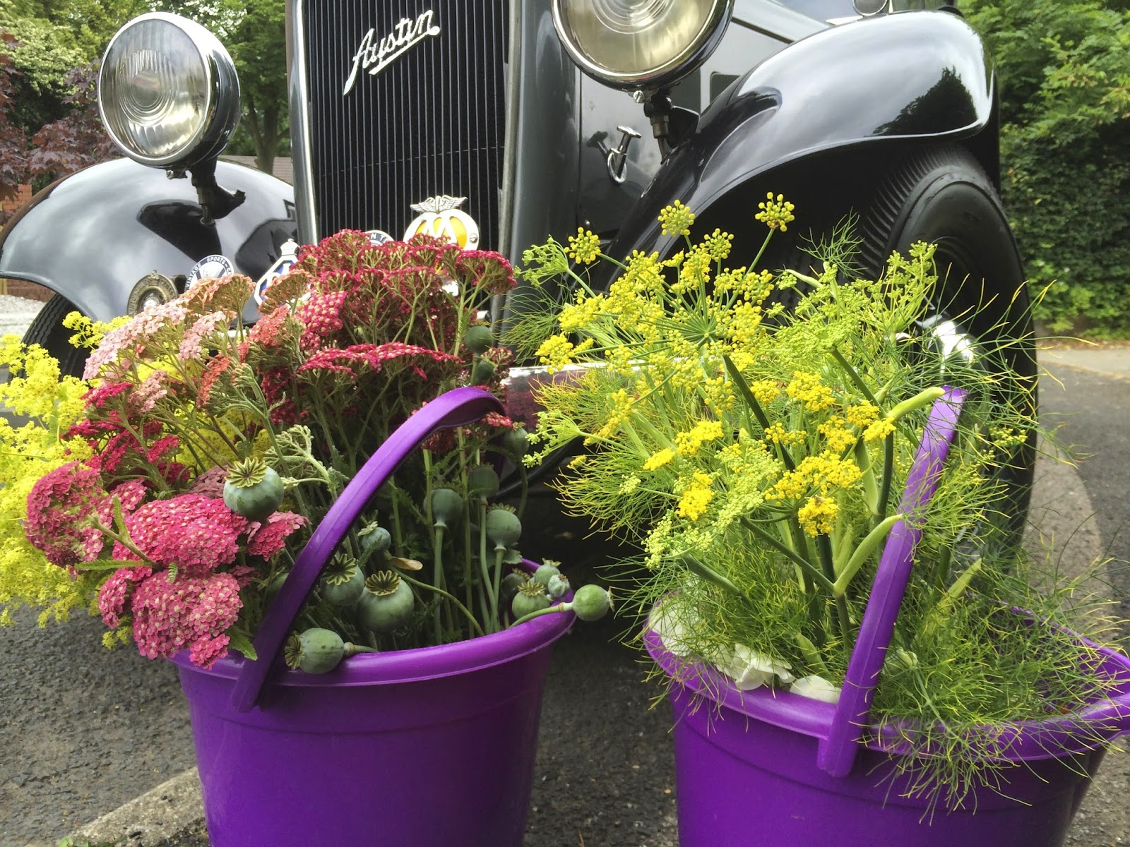 British cut flowers, Birmingham.  Tuckshop Flowers