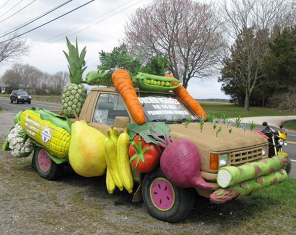 Vegetable art garden