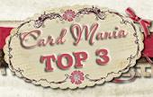 Top 3  30-06-2013