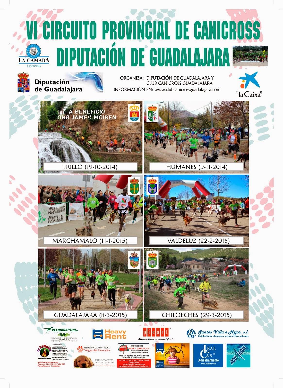 Guadalajara 8-3-2015, Cpto de clubes Postercircuito1415