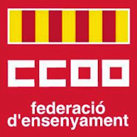 FE CCOO PV