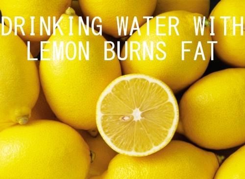 limão metabolismo