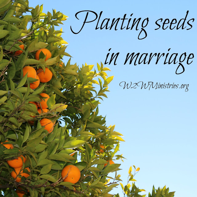 Planting seeds in #marriage