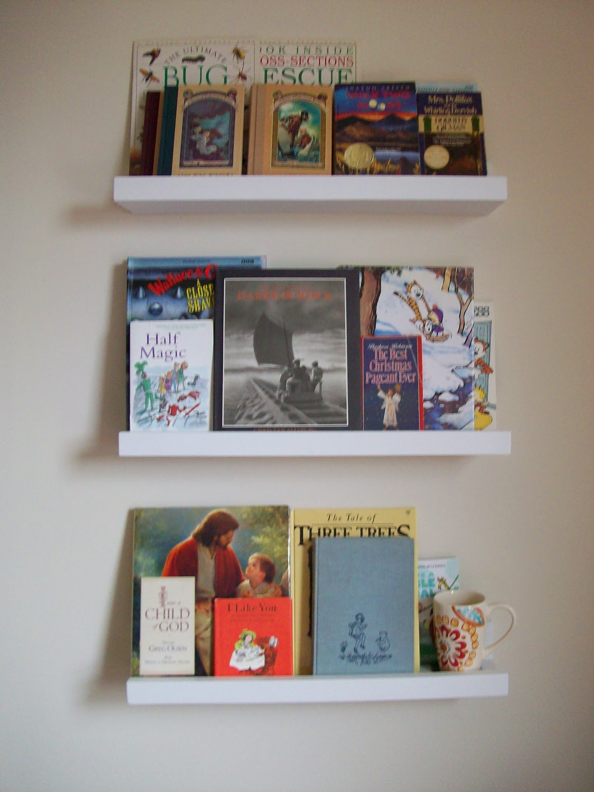 Dani kelly and tommy too diy front facing bookshelves for Read your bookcase buy