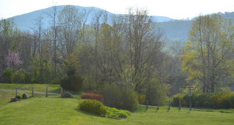 Spring Comes to the Blue Ridge