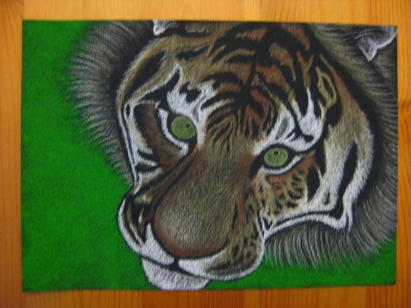 Voimaeläin - Tiikeri