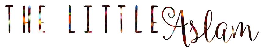 The Little Aslam