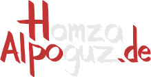 Blog von Hamza Alpoguz