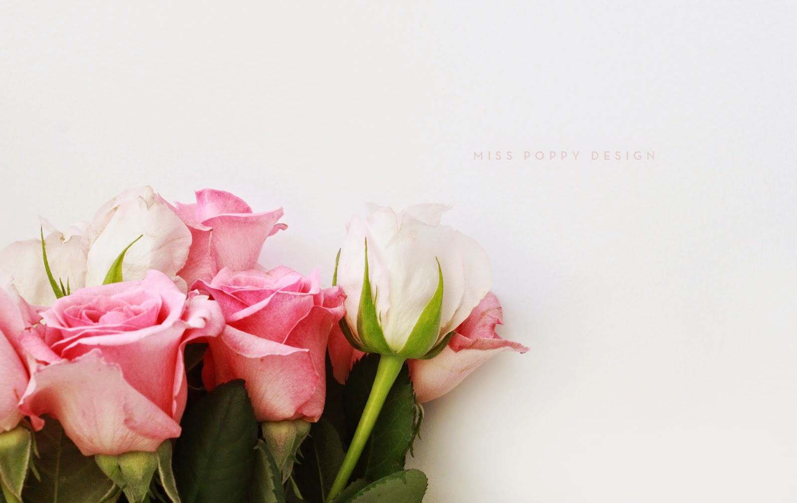 free pretty downloadable desktop wallpapers - dizzybrunette