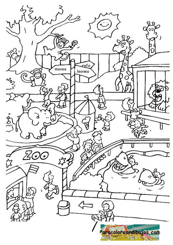 Dibujo de zoo para colorear | Para colorear dibujos y dibujos